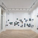 Silva_Garden_State_Mosaic_Rooms_installation_007 JPG