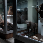 Zoo Museum, Kaunas 2013 (2)