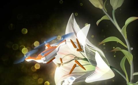 132310_web_Image credits_Eijiro Miyako